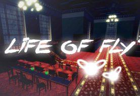 Агляд гульні Life of fly 2